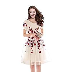 Vaankosh Fashion Women's Dress (vf-k-1_Free Size_White)