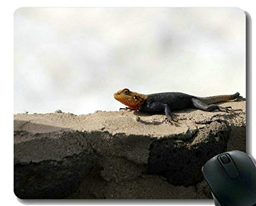 Leopard-eidechse (Kundenspezifische ursprüngliche Leopard-Reihen-Mausunterlage, Eidechsen-Gummi-Mausunterlage des riesigen Dinosauriers)