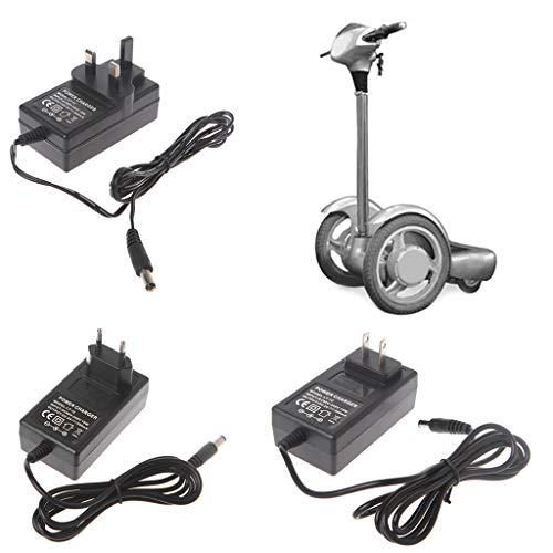 Hergon 24V 500mA Universal-Ladegerät, 90-240V Intelligenten Netzteil für Mini Smart Elektro Scooter (Elektro Scooter Ladegerät 24v)