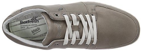 Boxfresh Spencer ICN Lea Mgry/Grif Gry Herren Sneakers Grau (MED GREY/GRIFFIN GREY)