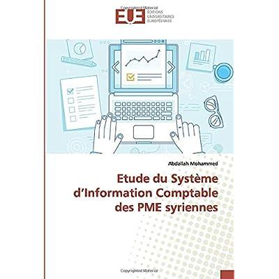 Etude du Système d'Information Comptable des PME syriennes