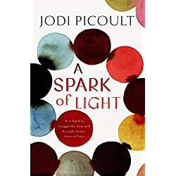 A Spark of Light: the fearless new novel from the Number One bestselling author (English Edition)