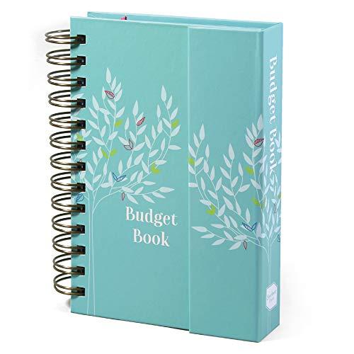 Boxclever Press Budget Book. Mon...