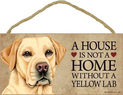 prz0vprz0v A House is Not A Home Without Yellow Labrador Retriever 5