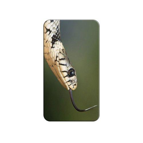 Gras Schlange–Zunge Metall Revers Hat Shirt Handtasche Pin Krawattennadel Pinback (Metall-schlange Handtasche)