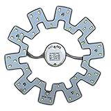 Modulo LED, set da montare per lampada circolare da soffitto, lampadina a tubo, 18 Watt, warmweiß, 2G10 18.00W 230.00V