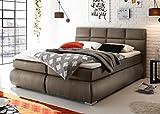 Froschk nig24 Kosali 180x200 cm Boxspringbett Bett mit Bettkasten Stone, Ausf hrung Variante 3