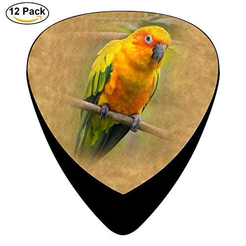 Celluloid Guitar Picks For Acoustic Guitar,Print Sun Conure Parrot,12 Pack (Conure Parrot Sun)