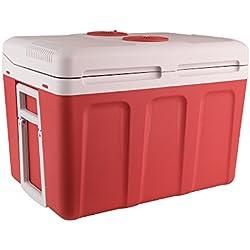 Auto Companion Glacière électrique portable chaud/froid 40 l 240 V CA & 12 V