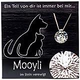 Anhänger Tiere von Mooyli Andenken Erinnerungsstück Anhänger ans Haustier mit Swarovski® Kristall zum Befüllen