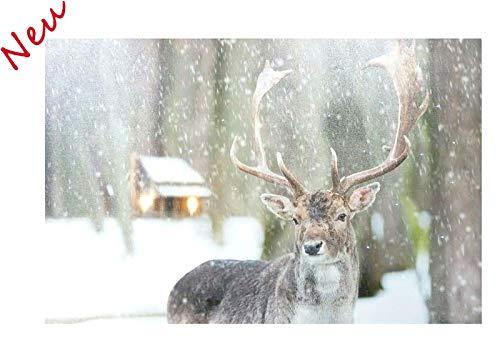 LED Bild für Weihnachten - Große Auswahl - Batteriefach (AA) - Weihnachtsbild/Leinwandbild / Weihnachtliches Wandbild Beleuchtet - Tolle & Realistische Lichteffekte (Elch - 60x40cm - 2 LEDs)
