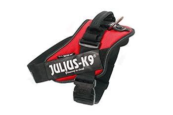 Julius-K9ID