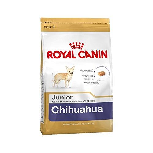 Crocchette Royal Canin Chihuahua Junior