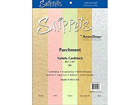 Accent Design Paper Accents ADP8511-5.1011 Variety Pack 8.5x11