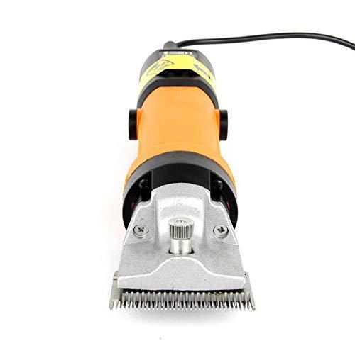 CWTJ Professionelle Pet Grooming Clippers, professionelle elektrische
