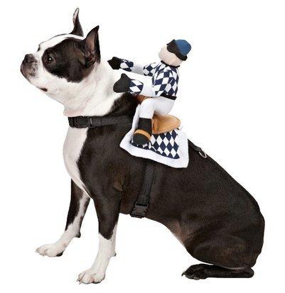 (Sattel für Hunde mit 2verstellbaren Riemen. Größe S)