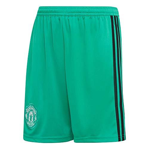 adidas MUFC H GK SHO Y–Pantaloncini Prima Maglia Portiere Manchester United FC, Bambino, Verde (Verres/Nero/Bianco)