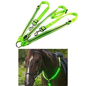 Mify LED-Pferdegeschirr-Halsband, hohe Sichtbarkeit, für Reiten, Nachtreiten, verstellbare Sicherheitsausrüstung