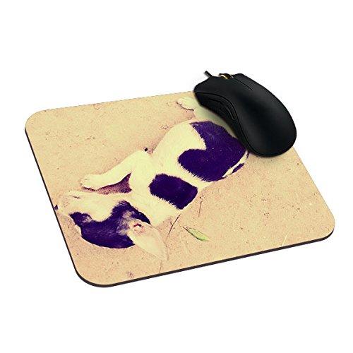 richess der Club der Bären Gepolsterte Maus Pad Pet Wash Maus Pad -