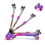 Educational Toys Scooter per Bambini Scooter per Acrobazia, Scooter Pieghevole per Bambini Scooter I Migliori Regali per Ragazze Giovani 05.20 (Colore : B)