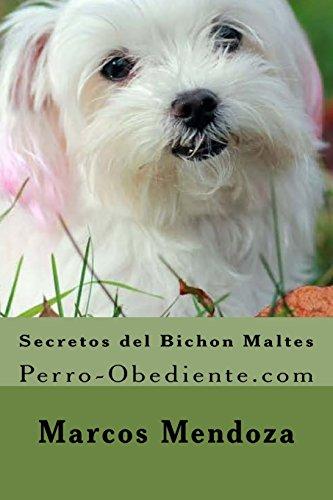 Secretos del Bichon Maltes: Perro-Obediente.com