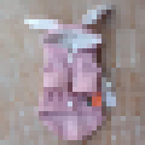 Rottweiler Kostüm - L Pet supplies Net roten Hund Haustier Katze Welpen Kleidung Ultra kleinen Körper Tasse Teddybär Kostüm Hasenohren Herbst und Winter Kleidung @ Button pink_4S: Rückenlänge 14 Büste 24cm