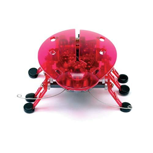 Hexbug 501091 - Beetle (Käfer), ab 8 Jahren, Elektronisches Spielzeug