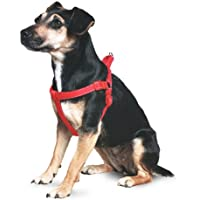 Ancol Padded Nylon Dog Harness Red XL 88-120cm