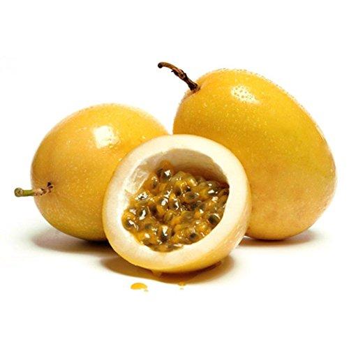Keptei Samenhaus- 20 Korn Maracuja Passionsfrucht Samen (Passiflora edulis) Obstpflanze Granadilla Seed mehrjaehrig schmeckt gut (Gelb)