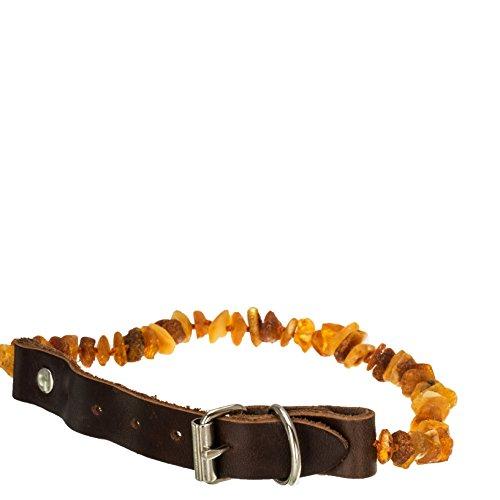 Hund und Katzen Halsband Anti-Zecken-Mittel Bernsteinkette Floh- und Zeckenschutz für Hunden unbehandelte baltische Naturbernstein Lederhalsband 15cm-35cm #1450 (15cm-20cm)