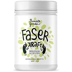 FaserKraft - Präbiotische Ballaststoffe | Darmgesundheit | Mit resistenter Stärke, Pektin, Inulin, Flohsamen, Beta Glucan und mehr! | Ohne Zusatzstoffe | Vegan | 350g