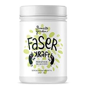 FaserKraft – Präbiotische Ballaststoffe | Darmgesundheit | Mit resistenter Stärke, Pektin, Inulin, Flohsamen, Beta Glucan und mehr! | Ohne Zusatzstoffe | Vegan | 350g | Glutenfrei