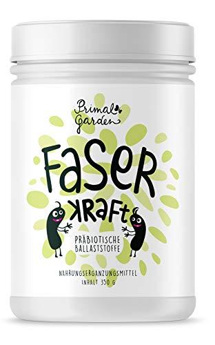 FaserKraft – Präbiotische Ballaststoffe | Darmgesundheit | Mit resistenter Stärke, Pektin, Inulin, Flohsamen, Beta Glucan und mehr! | Ohne Zusatzstoffe | Vegan | 350g