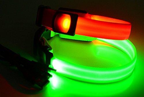 LED Leuchthalsband Basic 1 per USB aufladbar, Größe M, Grün - 2
