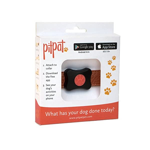 PitPat Dog Activity Monitor (Old Version - 2016 - No Distance Feature) 7