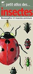 Petit atlas des insectes : Reconnaître 80 insectes communs