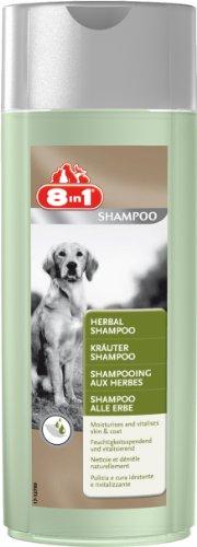 hundeinfo24.de 8in1 Kräuter Shampoo für Hunde (wirkt feuchtigkeitsspendend und vitalisierend für den Hund, Hundeshampoo Hundegeruch Hundewäsche Hundepflege Fellpflege), 250 ml
