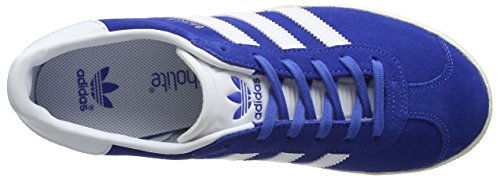 adidas Gazelle, Baskets Basses Homme Bleu (Blue/Ftwr White/Gold Metallic)