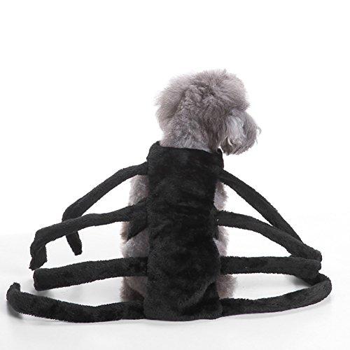 Hundebekleidung, Haustier kleine Hundemantel Spinne Kostüm Brustschutz Mode lässig Bekleidung Mantel 3 Größe (Color : Black, Size : ()