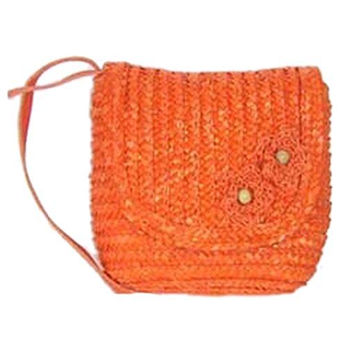 QIYUN.Z Des Femmes Consom- Plage Paille Fleur Tricotee epaule Bandouliere Petit Rabat Sacs Sacs Bandouliere Portes epaule Main