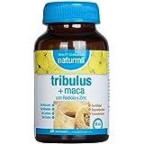 Tribulus Terrestris + Maca + Zinc + Rhodiola Rosea | Améliore Les Performances Physiques | Energisant | Endurance | Résistance | Musculation Homme