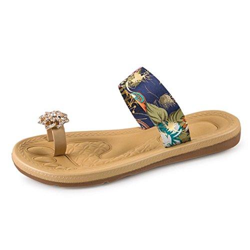 Klassische Mary Janes (Mode Blumen Flachen Sandalen Damen, DoraMe Frauen Strass Flip Flops Loafers Böhmen Schuhe PU Slipper Casual Clogs Sommer Neue Pantoletten (40, Blau))