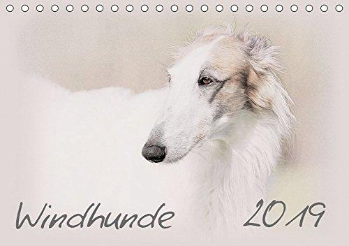 hkalender 2019 DIN A5 quer): Windhunde - Wunderschön gestalteter Kalender. Jedes Monatsmotiv gleicht einem kleinen Kunstwerk. (Monatskalender, 14 Seiten ) (CALVENDO Tiere) ()