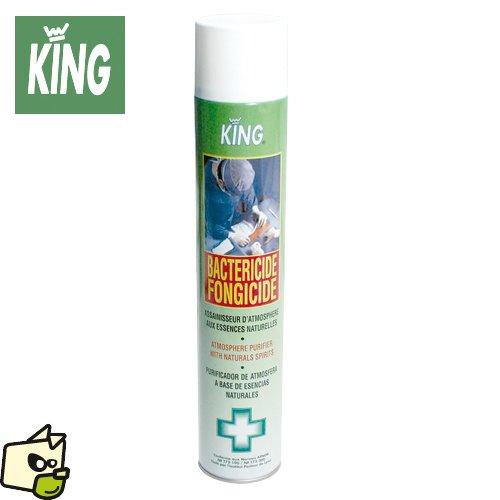 bactericide-fongicide-king-aerosol-desinfectant