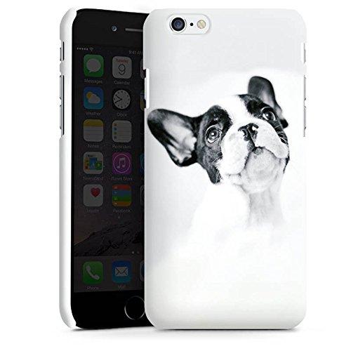 Apple iPhone SE Silikon Hülle Case Schutzhülle Hund Bulldogge Dog Premium Case matt