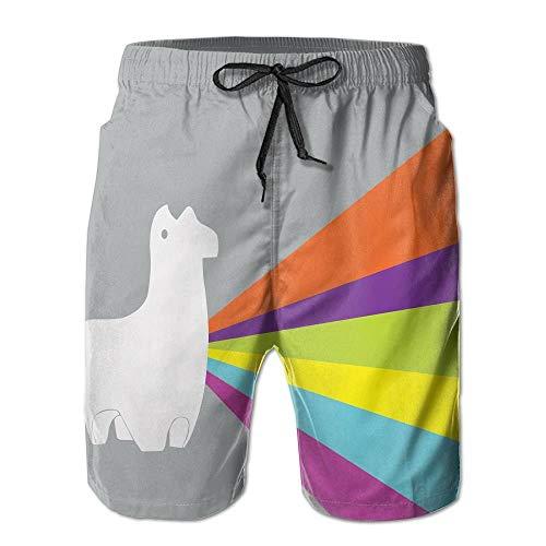 cleaer Macevoy Lama Rainbow Halloween Men's Beach Comfortable Running Workout Gym Shorts for Summer Medium