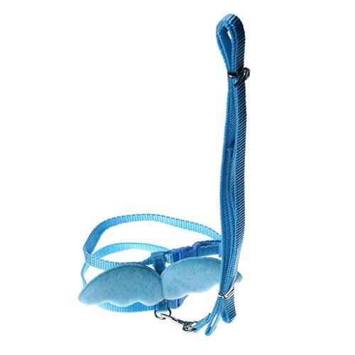 Qiuxiaoaa Haustier Kette Hundeleine Brustgurt Winkel Flügel Kaninchen Frettchen Schwein Geschirr Leine Bleigurt Nylon Nettes verstellbares Blau X-Small -