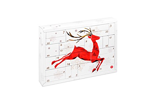 Erotischer Adventskalender Lovers
