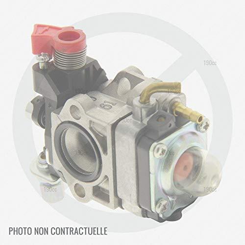 Voltor GABC34155 - Carburador desbrozadora