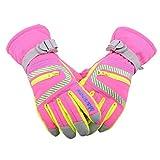 Die besten Thermische Handschuhe - TRIWONDER Wasserdichte Ski Snowboard Handschuhe Thermische warme Winter Bewertungen